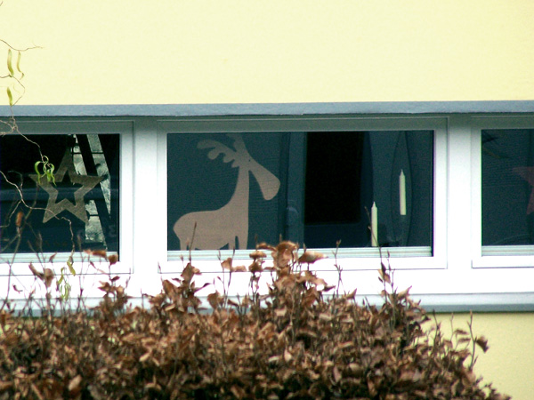 Nachbars Fenster / Neighbours Window